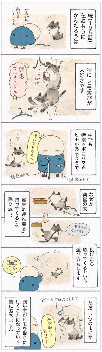 取ってくるのは結局人間のほう。猫との「とってこい」遊び 【ねこ連れ草】106話め|ねこのきもちWEB MAGAZINE https://cat.benesse.ne.jp/lovecat/content/?id=63265…