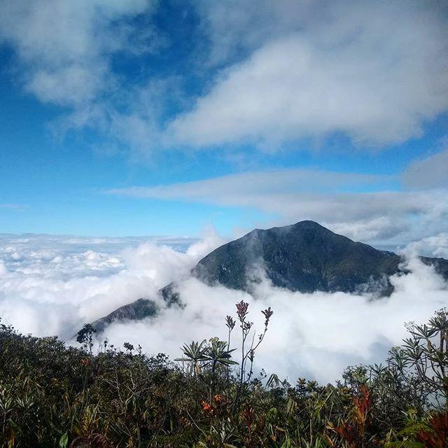 Energías positivas. . . . . #me #boy #camping #travel #ccs #caracas #piconaiguata #avila #warairarepano #life #nature #venezuela #photography