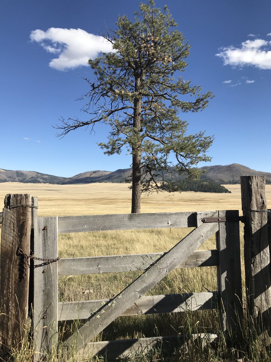 Valles Caldera, northern New Mexico. Hey guys! Just checking in. We're doing great and wandering around the west. Got big things coming up. Stay tuned for some awesome episodes of ⁦@ZoneDisruption⁩ coming up later this week! #travel #clearyourmind #wilderness #outside
