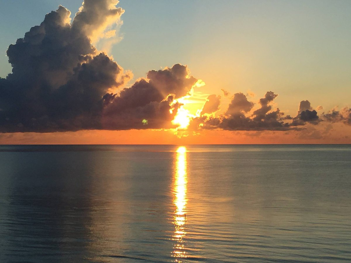 #goodmorning #MiamiBeach #sunrise #beachlife #gratitude #blessed #TuesdayMotivationpic.twitter.com/zVmRM0gzLn