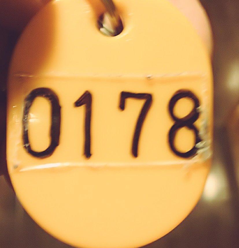 今日は岩盤浴を満喫してきました♨️178番のげた箱の鍵を持って受付でロッカーの鍵と交換すると、差し出された鍵は下二桁54番💃これって店員さんの粋な計らいですよね⁉️#Bz#ぷりん部