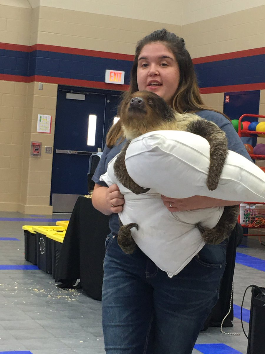 It's not everyday a sloth comes to @HemmenwayStreak! Today was so much fun! 🦥 #Hemmenwayallin #CFISDspirit