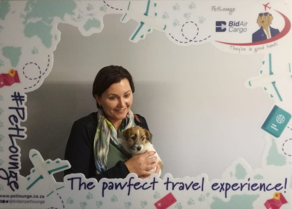 Little Stella recently flew from Cape Town to Port Elizabeth and was truly a delight to get to meet. ✈️ 🐾 #PetLounge #AnimalTravel #petlovers #loveforpets #animaltransportation #animals #petsoftwitter #pets #PortElizabeth #CapeTown https://t.co/hZCzJxu8FL