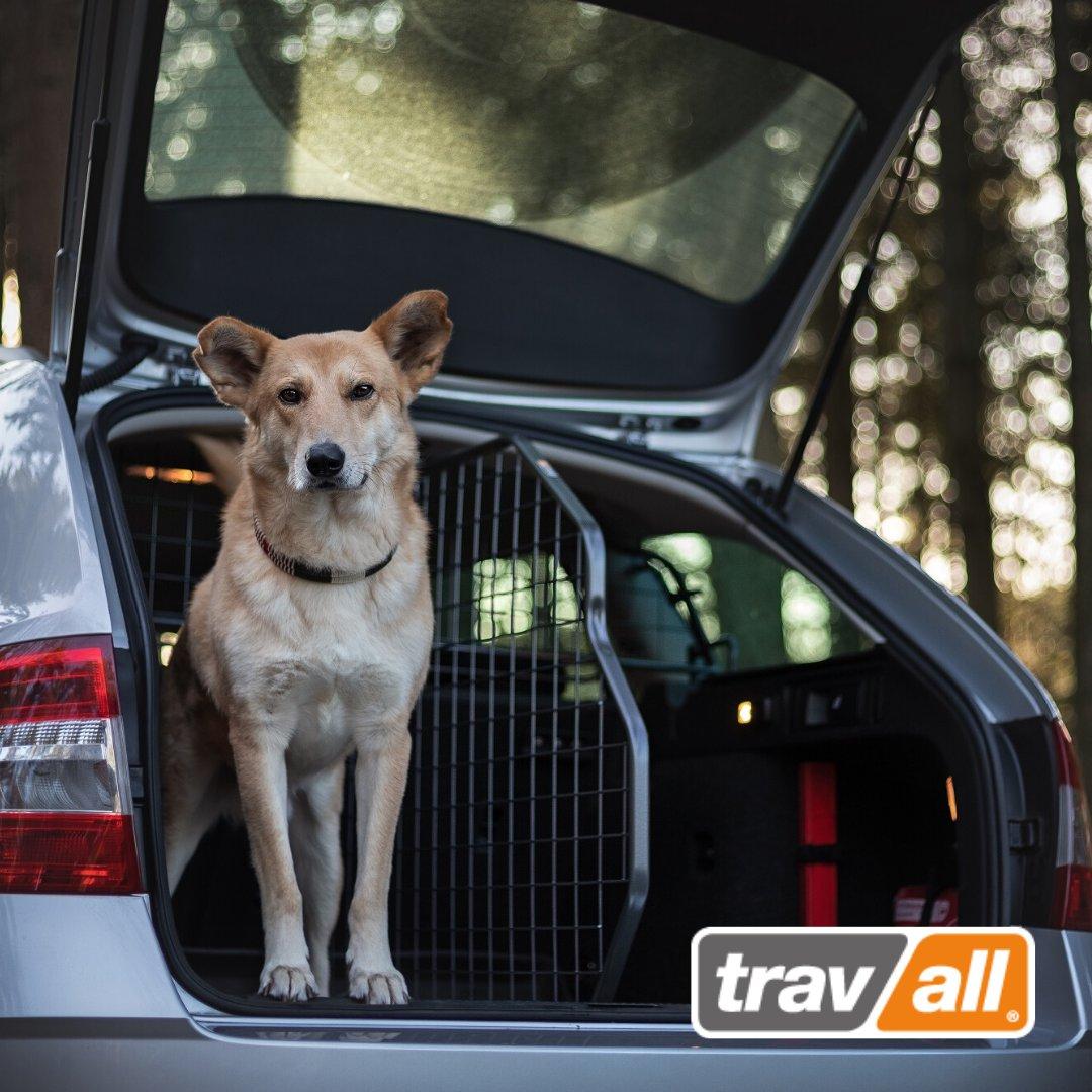 Minute für Minute werden die Tage im #Februar wieder heller und wir freuen uns auf längere Ausflüge mit #Hund. Mit dem #SafetyPack von #Travall sichert ihr eure Vierbeiner im #Auto.  http://www.travall.de  #Hundeliebe #Zubehör #Pfotenliebe #Sicherheit #enjoythejourneypic.twitter.com/RouZyShKlG