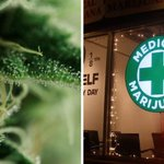 Image for the Tweet beginning: India's First #MedicalMarijuana Clinic Is