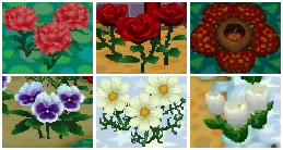 Lala On Twitter We Can See Red Flowers What S Flower It Is Animalcrossingnewhorizons