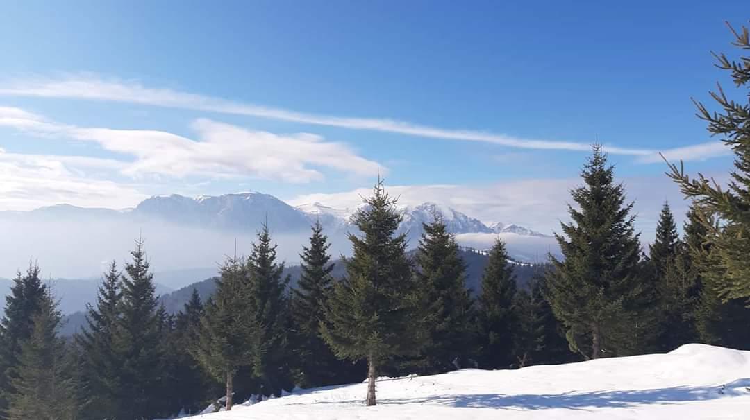 Just another day in #paradise   #hikingisheaven #bucegimountains #hikinginromania #ig_romania #igersromania #hikingadventures #mountainlove #mountains #naturewonder #naturelovers #whatawonderfulworld #whenindoubtgohiking #winterwonderland #winterhikingpic.twitter.com/B1VFgswmY1