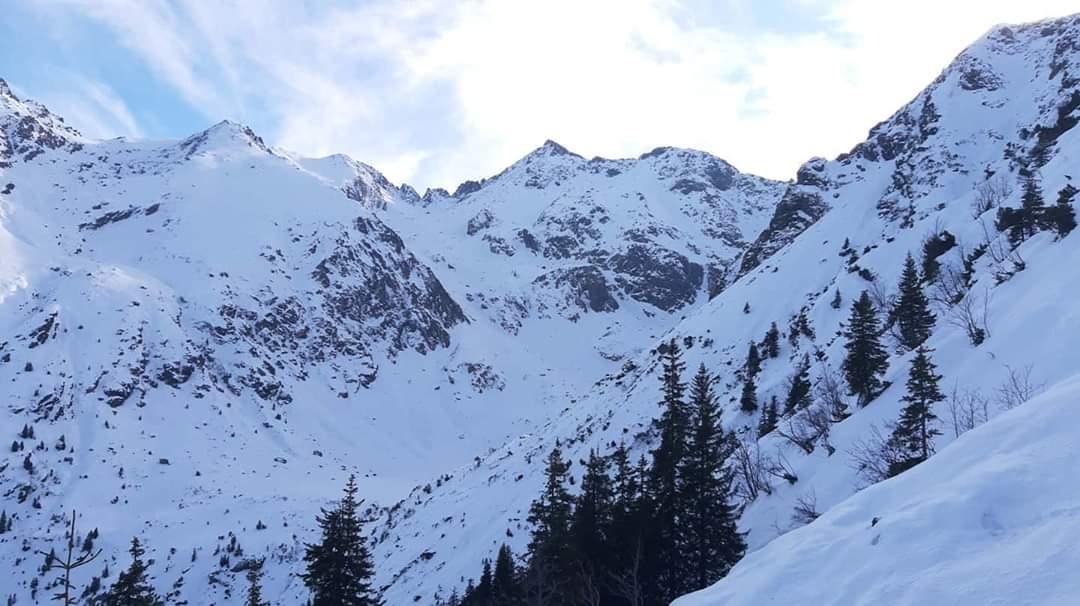 #Fagaras #hikingisheaven #hikinginromania #hikingadventures #hikingtrails #winterwonderland #mountainlove #ig_romania #igersromania #carpathianmountains #mountains #amazingnature #naturephotography #whenindoubtgohiking #whatawonderfulworldpic.twitter.com/WMZTQAAWNO