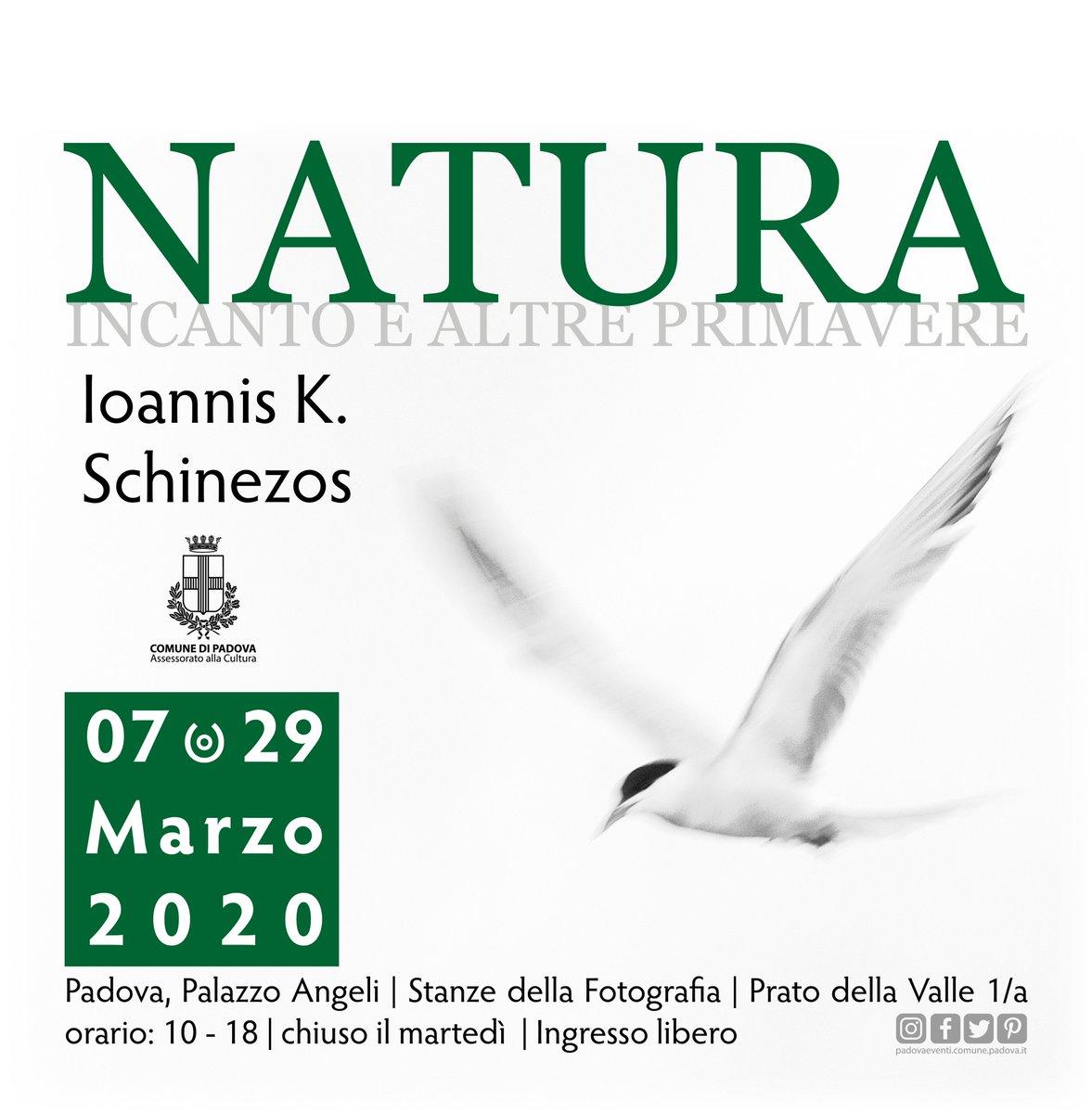 #savethedate #CondividiLaCultura Dal 7 al 29 marzo 2020 #Padova, Palazzo Angeli Informazioni bit.ly/2ttctoN @padovamusei @comunepadova @IlBoLive