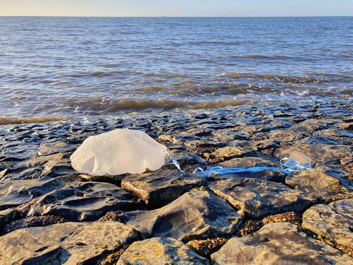 Kloteballonnen #plasticsoup #helpwad #waddencleanup aan de #waddenkust #dezeekust #wadden #werelderfgoed #waddenzee #wad #fryslân https://t.co/upoyrqEdAN