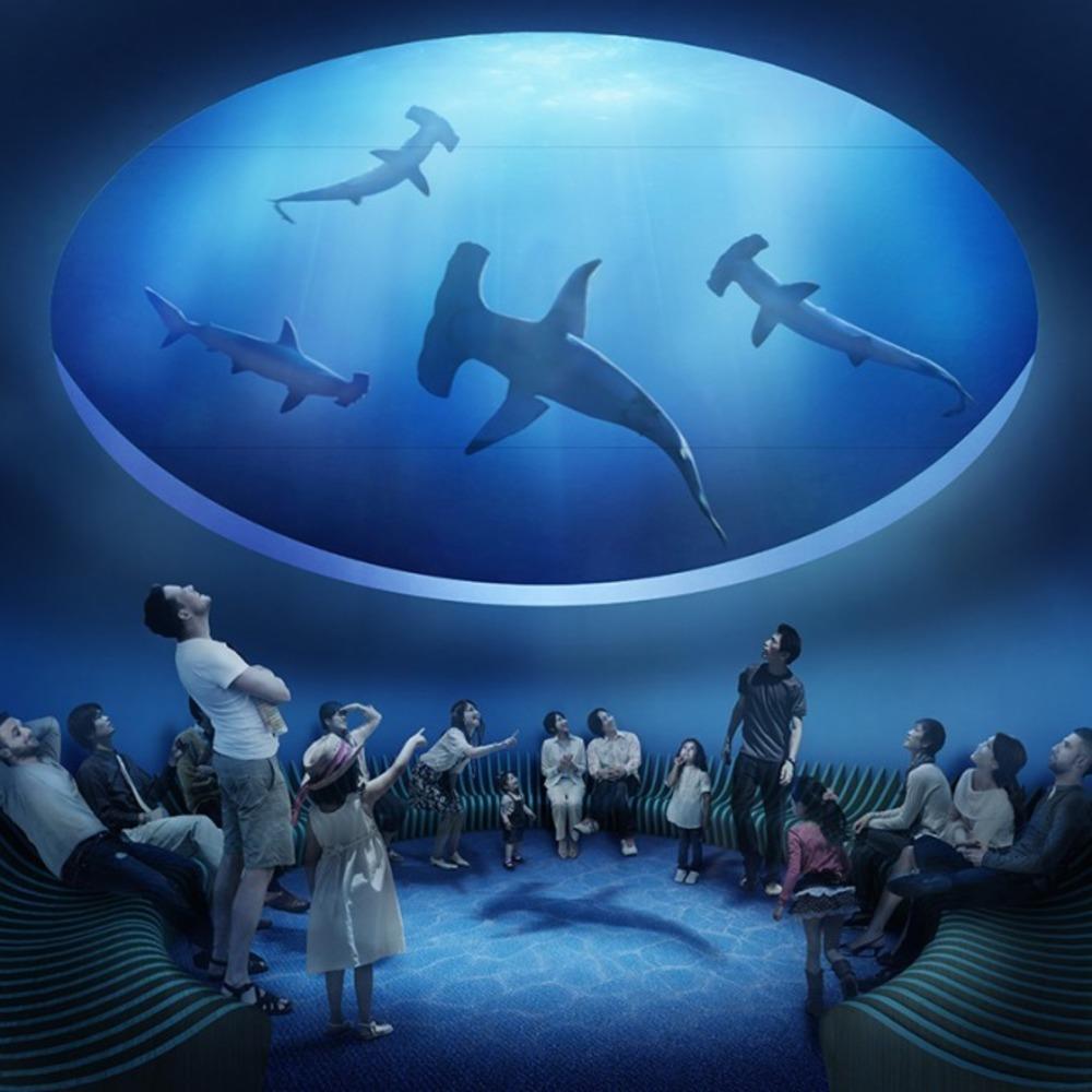 【館内初公開】四国最大級の水族館「四国水族館」香川に20年3月オープン、イルカショーは瀬戸内海をバックに -