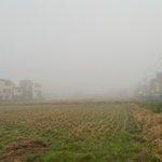 Image for the Tweet beginning: 皆さんこんにちは!! 指導員の新田です!  今朝はこんなに霧が 凄かったです😱😱 こんな時はいつもより 車間距離をとりライトを つけたり十分気をつけましょう! #ネヤドラ #濃霧