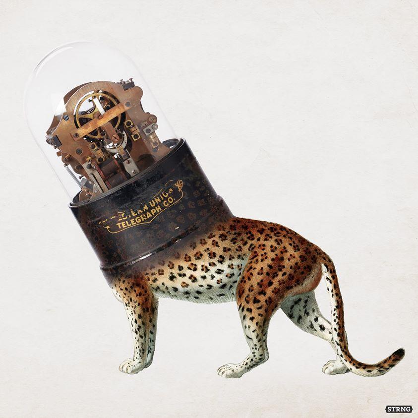 Kloŝo 2 #2020 #leopard #cloche #minimal #vintage . . . . . . #collage #strng #eliashstrongowski #collageart #collageartist #instacollage #digitalcollage #collagecollectiveco #collagecollective #collagestash #collageartwork #contemporarycollage #collagedigital #surrealartpic.twitter.com/VfnjppgI0v