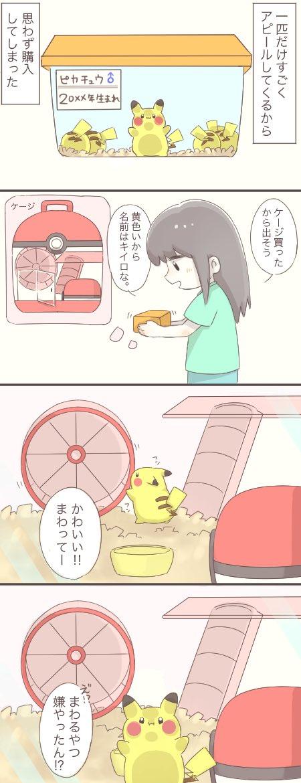 黄色いネズミを飼う