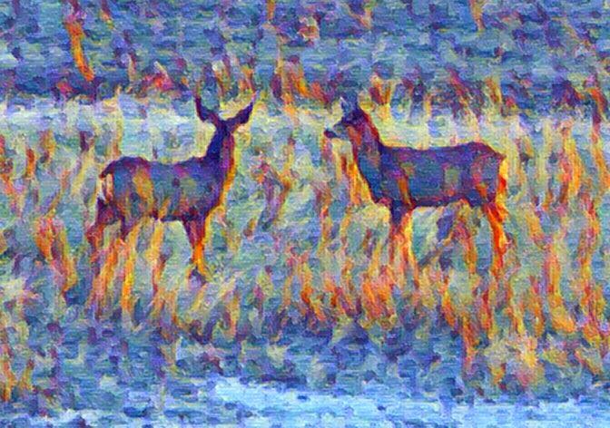 """Deer O! Deer"" #iphoneart #iphone #photoart #phoneart #digitalart #digitalartwork #digitalpaint #becassoapp @becassoapp #filterra @googlesnapseed #GoArt #fotor @fotor.compic.twitter.com/nOM3kSIf0m"