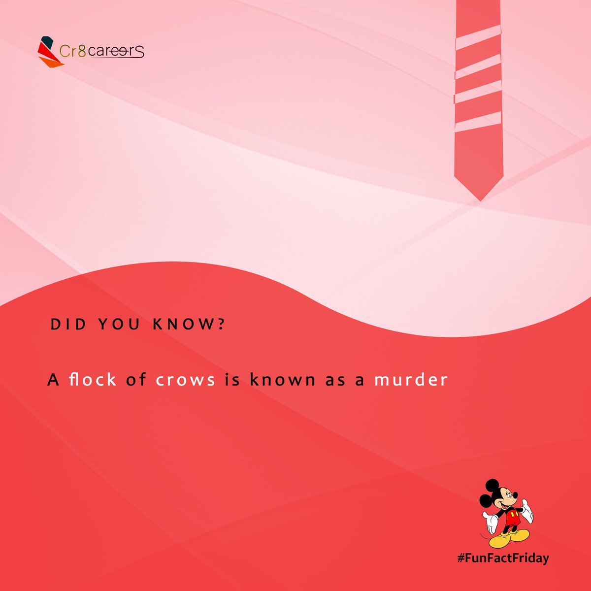 A Flock Of Crows Is Known As A Murder, Did You Know? #FunFactFriday . Follow Us #Cr8Careers . #Recruitment #Outsourcing #Assessments #OccupationalInterests #HRNigeria #CreativeBusinessOwner #CreativeHappyLife #CreativeBiz#crow #murder #Death #TGIF #crows #fri #flockpic.twitter.com/G3BsiC2yQc