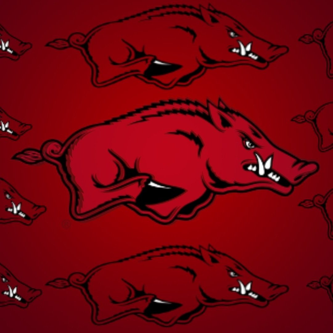 Just because the NCAA and The Whole College World hates us so bad!. I'm going to post Razorback photos all day. And yes some will repeat. #WPS