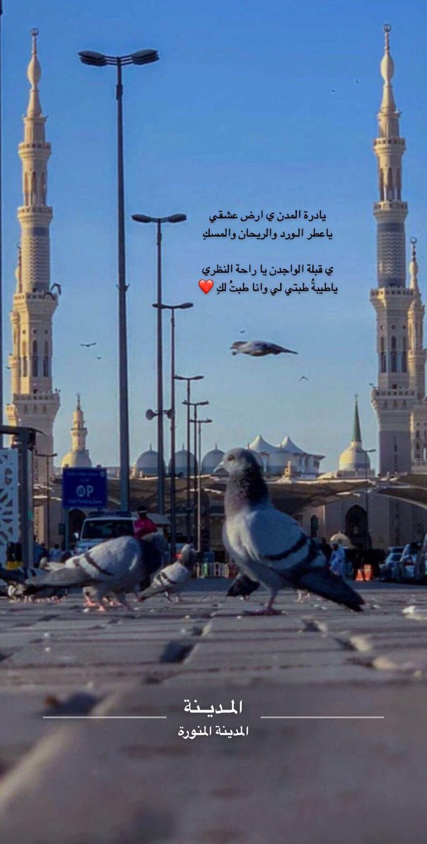عبارات عن حب المدينة المنورة