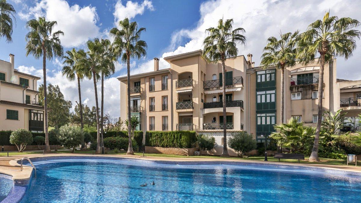 - Wir bringen Sie auf die Insel.  Appartement in einer gepflegten Anlage am Golfplatz in Santa Ponsa.  Preis :  285.000,-- Euro  http://ow.ly/uxEA50y3tN8  #Mallorca #santaponsa #golf #PURMallorca #appartement #baleares #mallorcalove #decorationinterieur #propertyforsalepic.twitter.com/ukEQJYvGwi