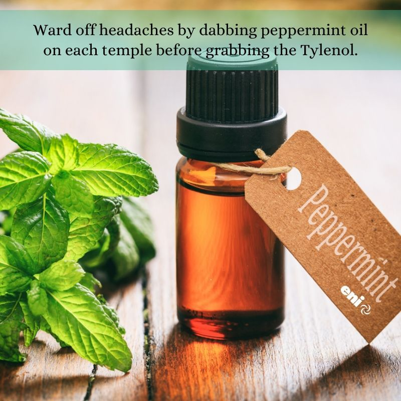 Ward off headaches by dabbing peppermint oil on each temple before grabbing the Tylenol. #healthychoices #healthyliving<br>http://pic.twitter.com/1qIl6jbS6c