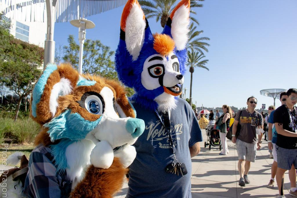 This cute pupper is blowing yall a kiss on this #FursuitFriday! Dont leave her hanging, blow one back!   @TheCollieCorner  #furry #furryfandom #furryfandomart #furryartist #furryart #fursuiter #fursuit #SanDiego #sandiegocomiccon #sdcc2019 #con #collie<br>http://pic.twitter.com/LZoBtp9JX1