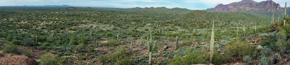 Gotta love this state. #Arizona #hiking @AZ_in_photos @abc15