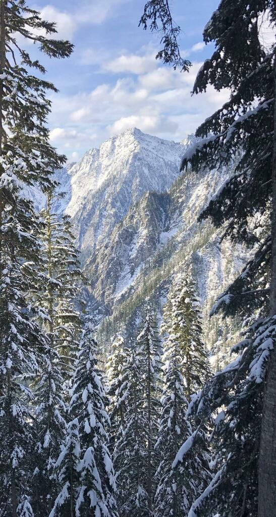 #Hiking after a fresh November snowfall in the North Cascades, Western Washington [OC] [1614 x 3024] #travel #earth http://roadlesstravelled.co.uk
