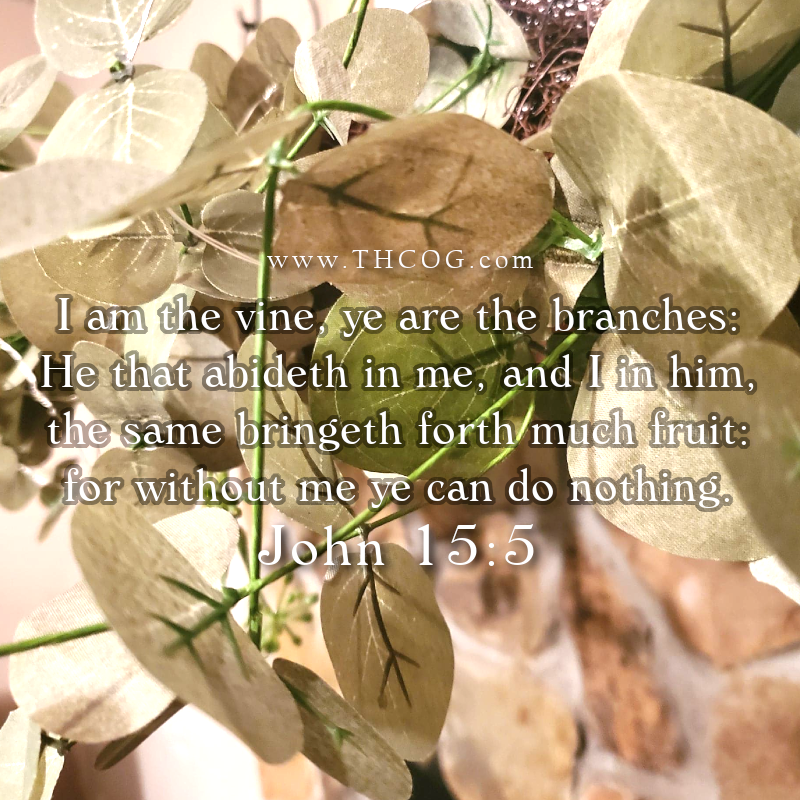 "***NEW ePIC: ""The Vine""  John 15:1-11  #Scripture #Bible #Verse #ePIC #New #THCOG #Quotes #Inspiration #PicoftheDay #Thoughts #Vine #Branch #Abide #Jesus #Love #Commandment #Joy #Full #Christian #Fruit #Abundant"