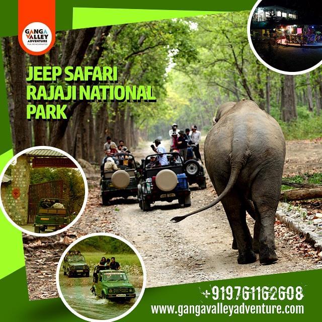 Jeep Safari Rajaji National Park #rajaji #rajajinationalpark #wildernessculture #wildlife #wildlifeplanet #wildlifephotography #wildlifeonearth #wildlifeindia #wildlifeuttarakhand #uttarakhand #jungle #jungleboys #forest #traveler #adventure #india #safari #jeepsafaripic.twitter.com/QpQqBtekNL