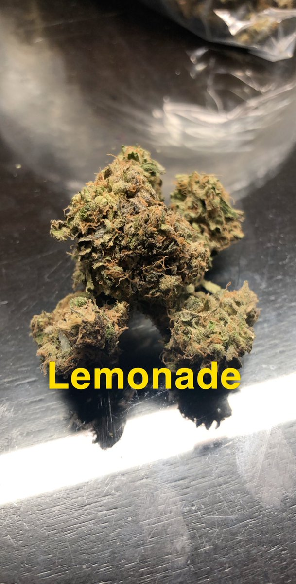 Lemonade flower, smells as expected. Nice citrus after tones with a bit of earthiness to it. High is mellow, but feels creative. #thehighhousewife #cannabissessions #stonermom #stonerwife #healingflower #Marijuana #cannabis #trees #420lifestyle #weedporn #recreationalmarijuana pic.twitter.com/JOxm2EzT7C
