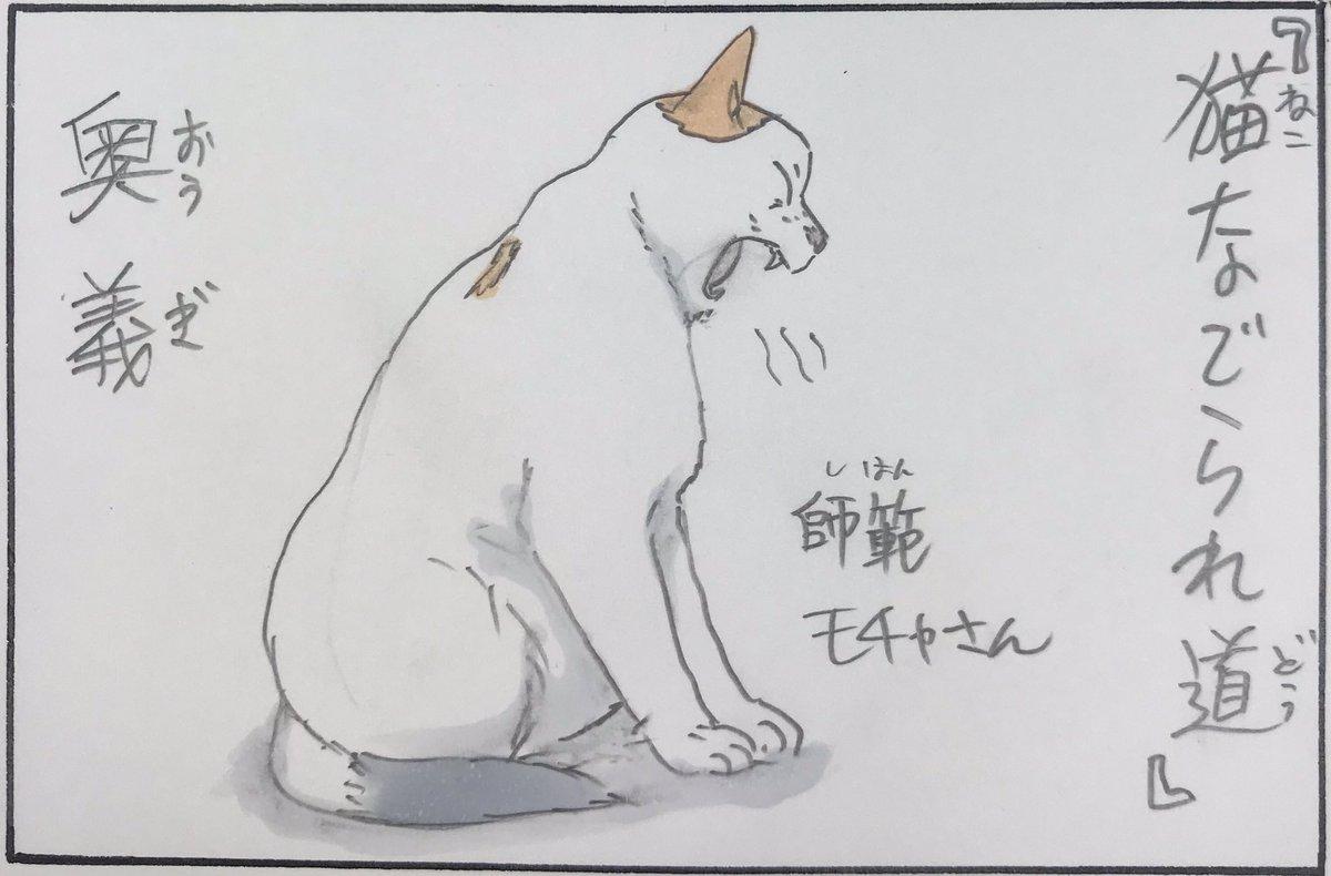 『猫なでられ道』