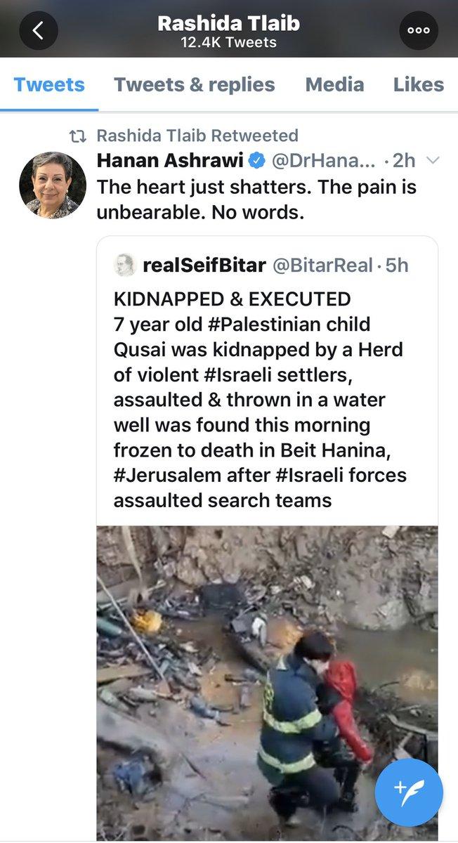 Rep. Tlaib Retweets False Claim About Israelis Killing Palestinian Boy