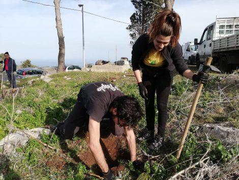 Piantati 200 nuovi alberi per rimboschire Monte pellegrino dopo l'incendio del 2016 (FOTO E VIDEO) - https://t.co/G1PmpZFpWO #blogsicilianotizie