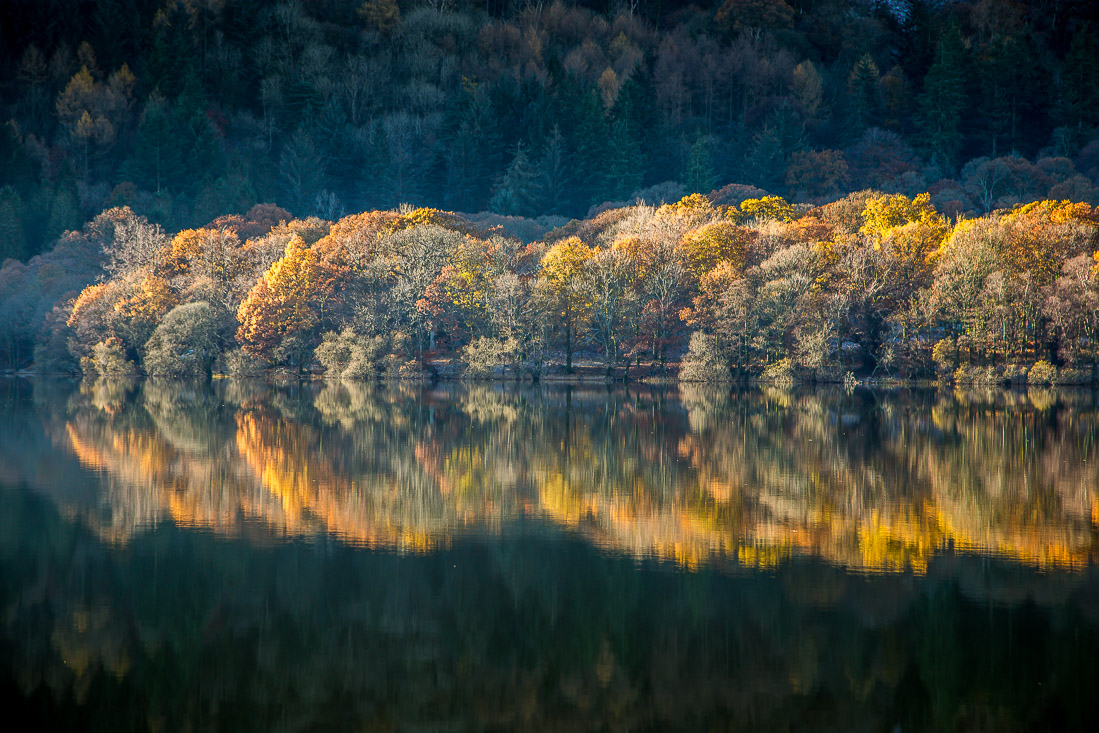Reflections of trees in the #LakeDistrict<br>http://pic.twitter.com/zht7ln2Uv0