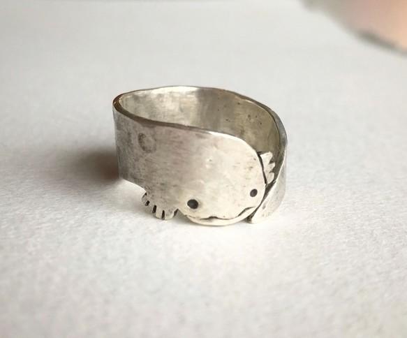 「オオサンショウウオのリング」オオサンショウウオのシルバーリング。ユル〜い顔をしたオオサンショウウオが、あなたの指に棲みます。かわいい……