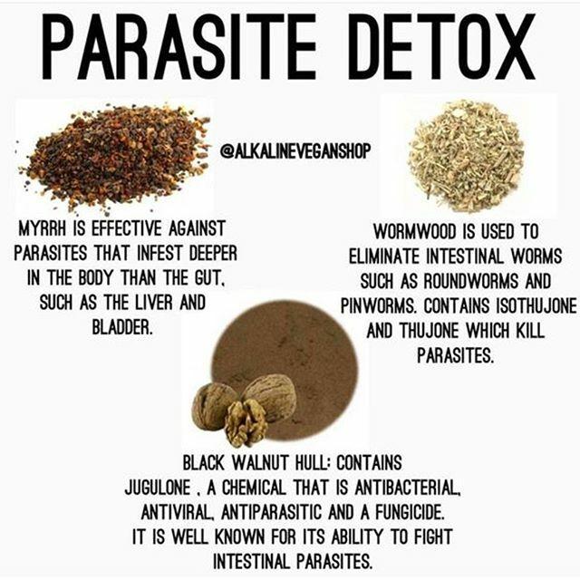 Parasite Detox #health #healthy #fit #fitness #parasites #detox #diet #nutrition #eatclean #allfitpics