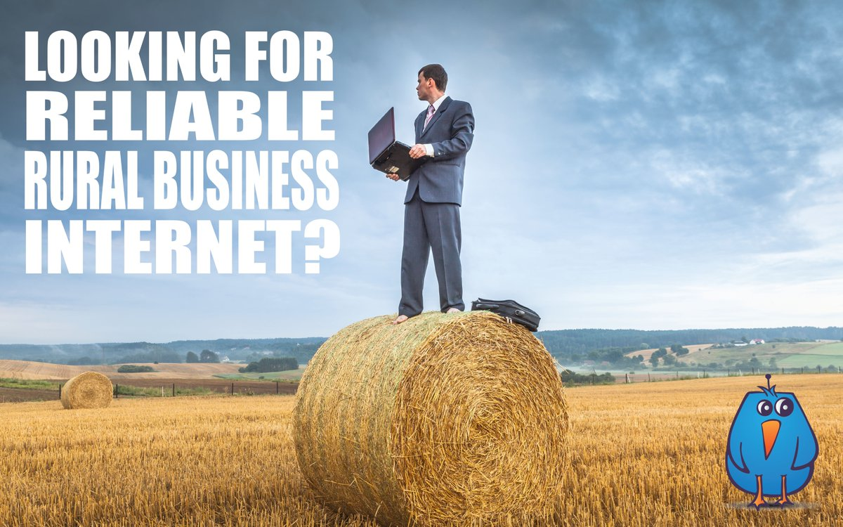 Need fast reliable rural internet for your business?  Call us today!  519.688.2223.  #ruralinternet #wirelessinternet #businessinternet #homeinternet #tillsonburg #oxfordcounty #elgincounty #norfolkcounty