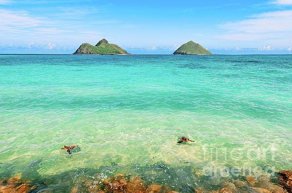 "New artwork for sale! - ""Lanikai Beach Two Sea Turtles and Two Mokes"" -  https:// fineartamerica.com/featured/lanik ai-beach-two-sea-turtles-and-two-mokes-aloha-art.html  …  @fineartamerica<br>http://pic.twitter.com/mXT4A3byqC"