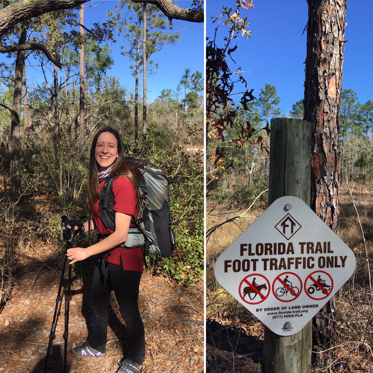 9.5 miles in the Withlacoochee Forest today - the weather was AMAZING! Can't wait to #optoutside with some #IMSchargers in our new hiking club! The IMS Outsiders will have their first meeting 2/3/20 from 2:30-4:30 in room 302. #takeahike <br>http://pic.twitter.com/wmgFtK9Mw4
