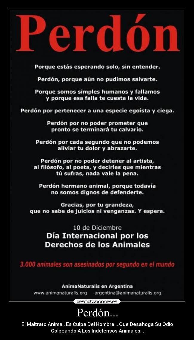 #ExpertoAnimal #MundoAnimal #ReinoAnimal #Animales #Naturaleza #Mascotas #AnimalesdeCompañía #AnimalesGraciosos #AnimalesTiernos #AdoptaNoCompres  #NoAlMaltratoAnimal  #AdopcionResponsable #Valores #bondad #Verdades #Animalitospic.twitter.com/JRCWIOZpZK