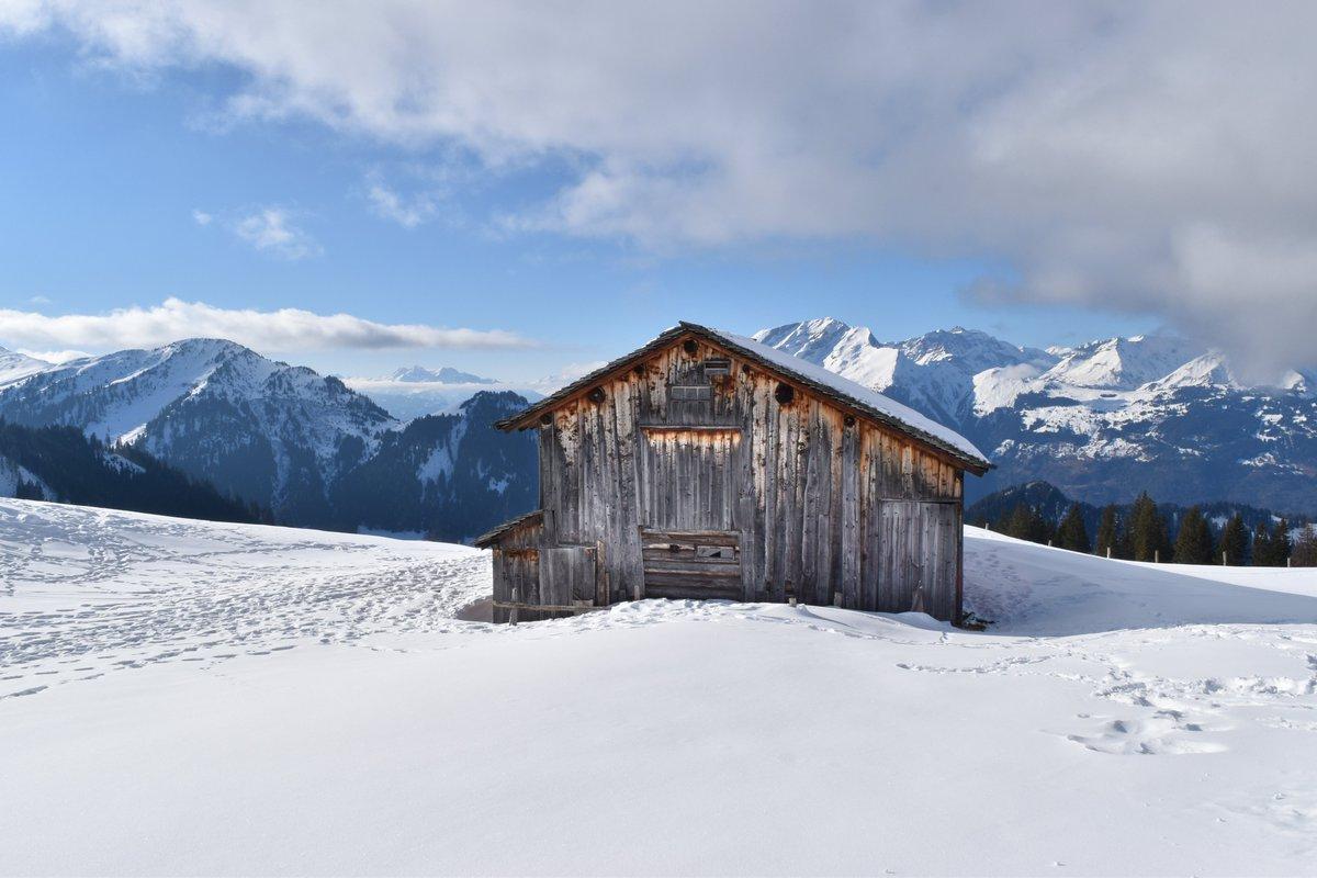 Herrliche #Winterwanderungauf dem sonnigen #Hochplateau von #GrüschDanusa: https://bit.ly/2GqzGdY  #danusa #grüsch #swisshiking #hikingswitzerland #blickheimat #swisshike #wandern #wanderung #wandernschweiz #swissalps #winterwandern #winter #graubünden #winterwanderwegpic.twitter.com/GzRbLKZKp4