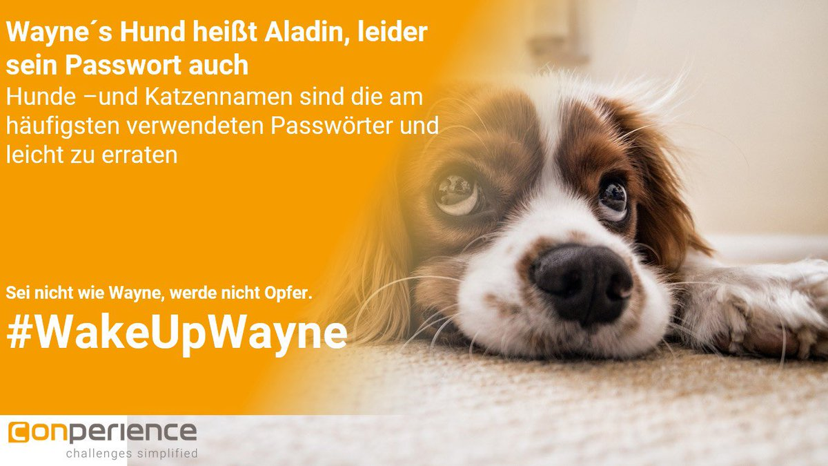 Wir lieben Hunde, aber nicht als PasswortSei nicht wie Wayne, werde nicht Opfer. #hundeliebe #WakeUpWayne #weristeigentlichwayne  #managedservices #managedserviceprovider #manageditservices #managedsecurity #smallbusiness #security #firewall #cyber #cybersecuritypic.twitter.com/uKrIxU0B3H
