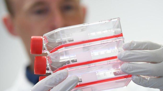 Coronavirus infecta a cinco personas más