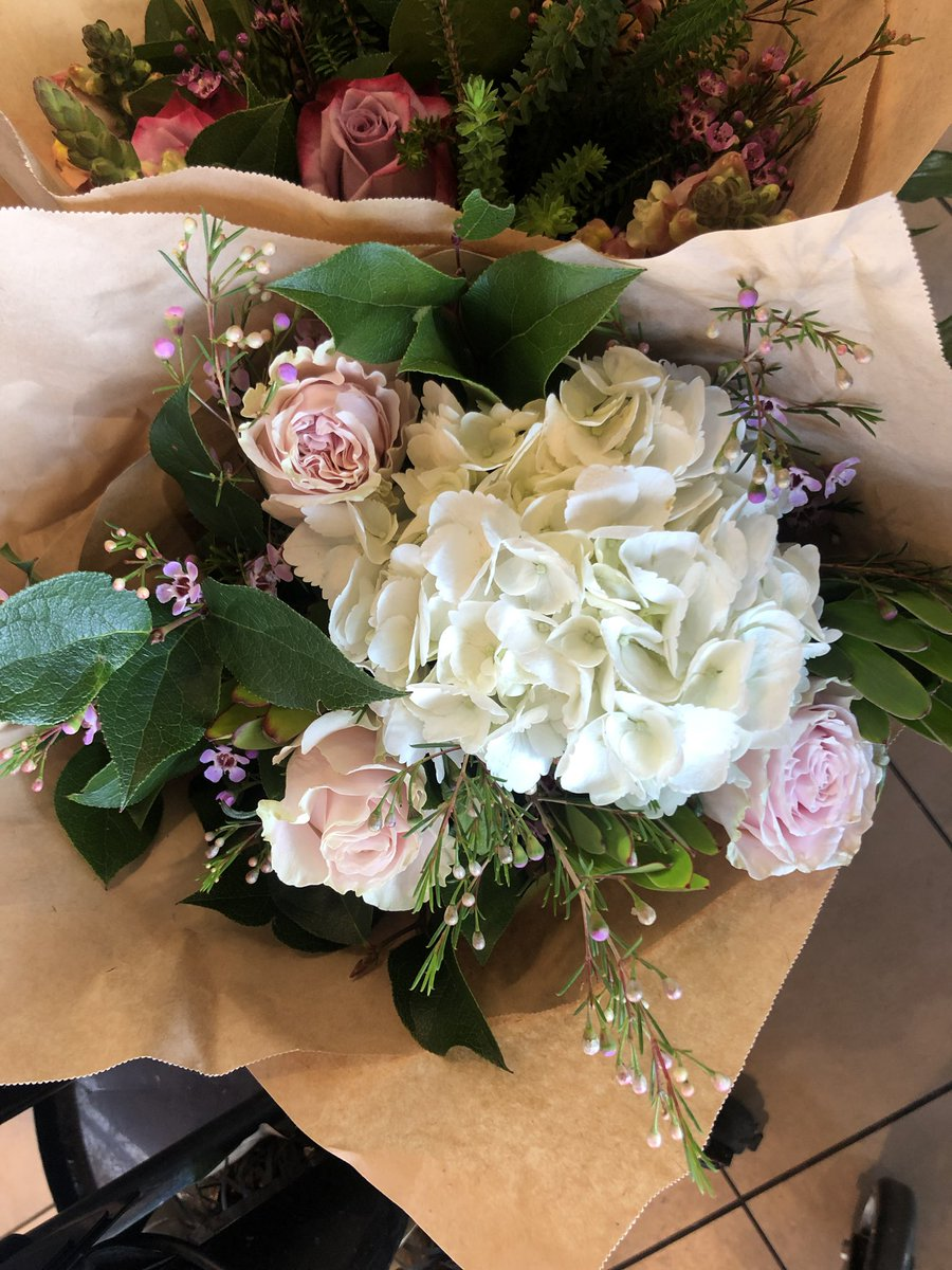 #flowers #love #garden #roses #spring #fall #beauty #bouquet #fashion #scenery #fruits #vegetables #beauty #cool #photography #video #movies #camera