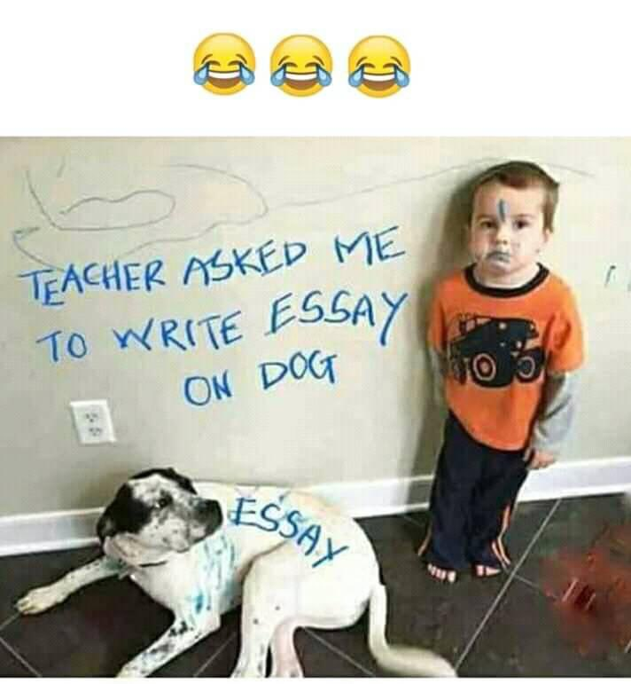 Ignore hashtags#indianmemes #memes #desimemes #funnymemes #bakchodi #meme #dankmemes #memesdaily #chutiyapa #sarcasm #funny #indianjokes #hindimemes #trolls #bollywoodmemes #desimeme #sarcasticmemes #lol #bollywood #dankmemes #offensivememes #students #tiktok #factspic.twitter.com/50cDVXBlUb