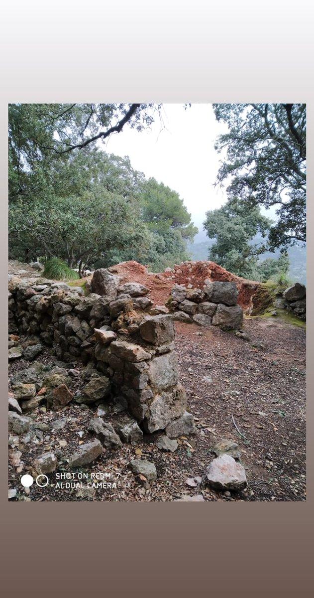 Lugares para explorar... http://www.serradetramuntana.net/es/blog-serra-tramuntana-patrimonio-mundial/Blog_2016/las-casas-de-nieve… #tramuntana #Mallorca #enfermeradelibre #dominguera #nomecreoniyotenerundomingolibre #baleares #senderismopic.twitter.com/ZuqYdQYOva