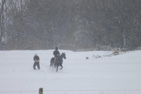 Horse-and-Buggy Snowboarding in Amish Indiana https://amishamerica.com/horse-and-buggy-snowboarding-amish-indiana/?utm_campaign=meetedgar&utm_medium=social&utm_source=meetedgar.com … #amish #amishcountry #country #pennsylvania #lancasterpa #anabaptist #pennsylvaniadutch #amishlife #amishgirl  #lancastercounty #lancaster #mennonite #countryside #amishromance #amishauthors #amishfictionpic.twitter.com/HHRSZ1qAWL
