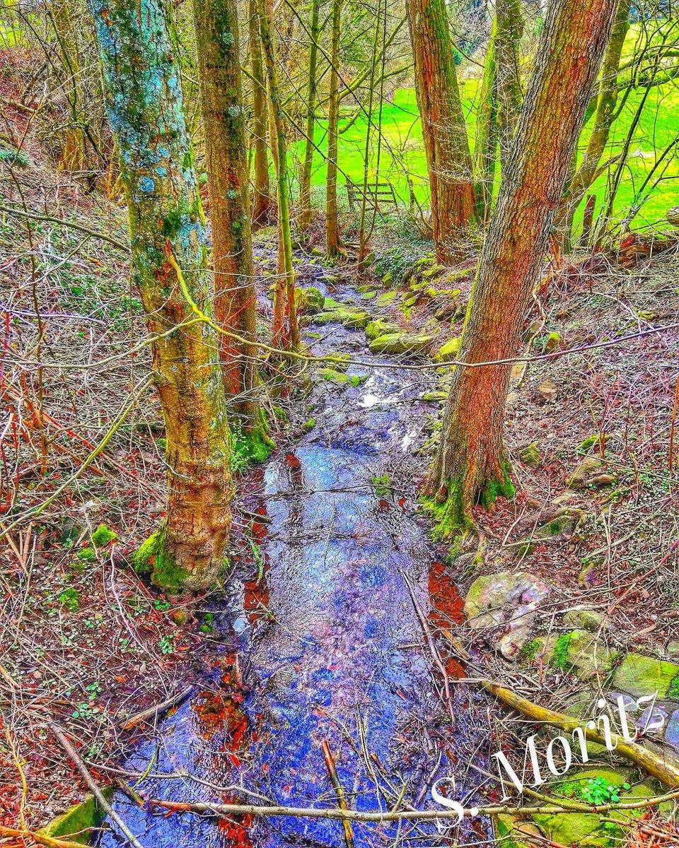 #hoppyfotografie #fotografie #landschaftsfotografie #foto #fotograf #wald #naturschutzgebiet #herbst #sonne #regen #sonnenuntergangpic.twitter.com/roYC1dolum