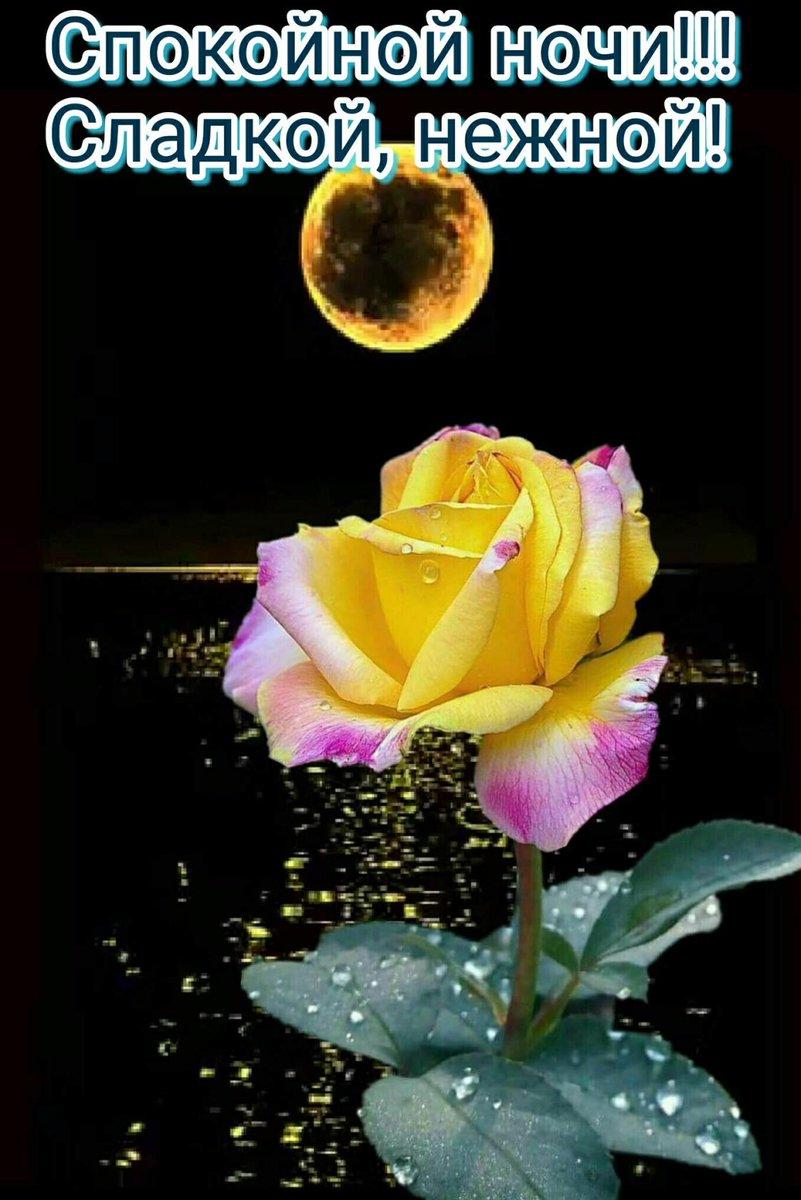 Картинки хорошего вечера спокойной ночи