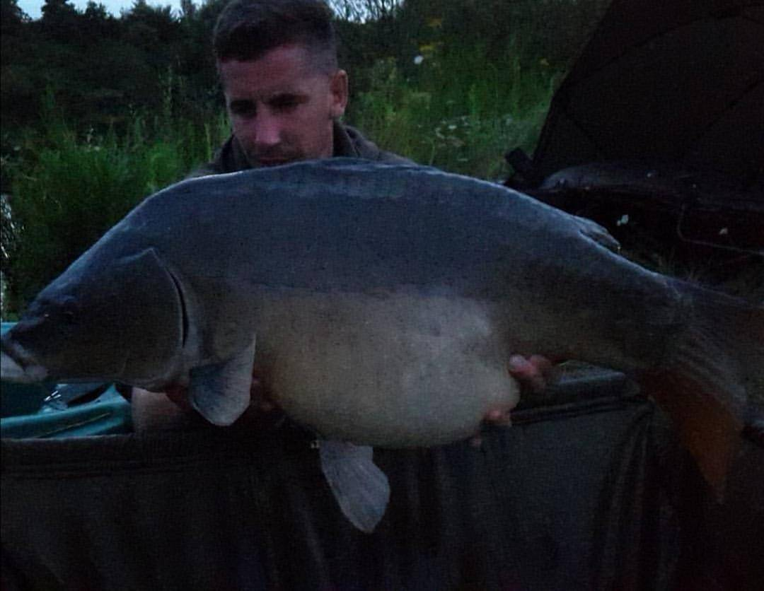 Seed sensation has been at it yet again, tempting this brute of a mirror in for our team member Dan. Great Angling! #IncredibleBaits #UKFishing #BanksideLife #ByTheBank #ForeverFishing #Wintercatch #BestBait #SeedSensation #WarriorCarp #GoodAngling #ThatsCarpy #TopCatch #Lakelife pic.twitter.com/pangggT4W2